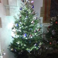 Cuckfield Church Christmas Tree Festival