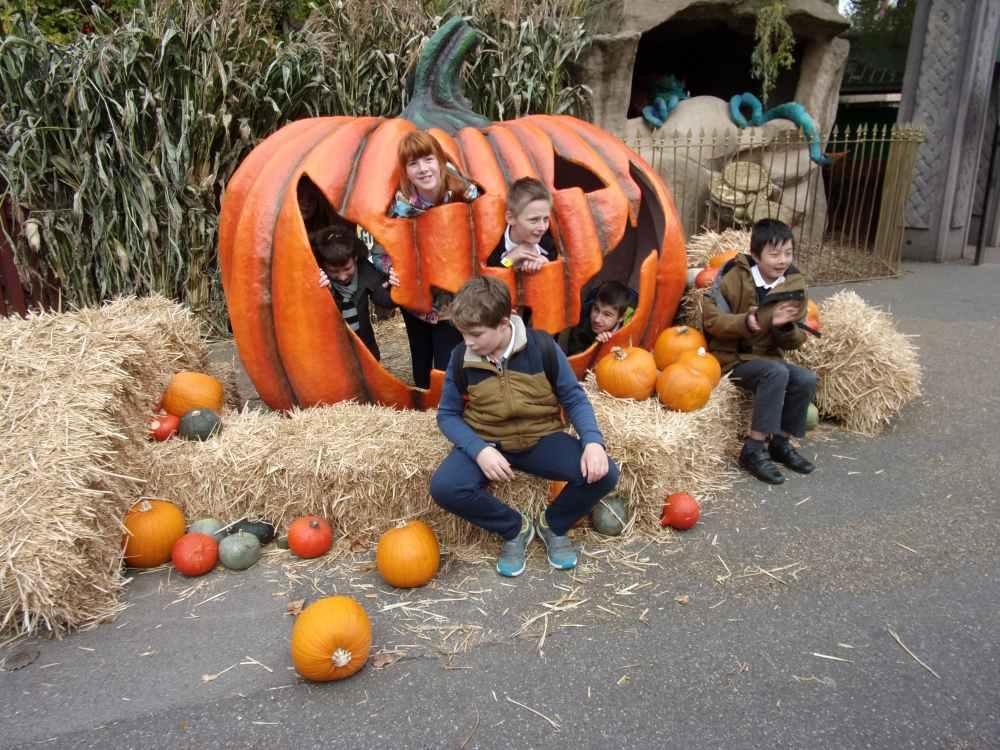 Pumpkin Chessington